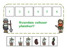 Plant Cycle Sequencing Activity & Seed Matching | Less Commonly Taught