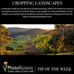 Photography Tip of the Week | Cropping Landscapes | full post at http://photobotanic.com/cropping-horizontal | #photography #howto #phototips #photographytips #gardening #garden #gardenphotography