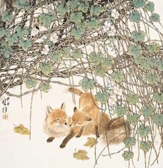 © Fang Chuxiong, Animals , Chinese , Beauty , Pictures , fox Sumi E Painting, Chinese Painting, Chinese Art, Japanese Prints, Japanese Art, Fox Totem, Fox Images, Fox Drawing, Fox Spirit