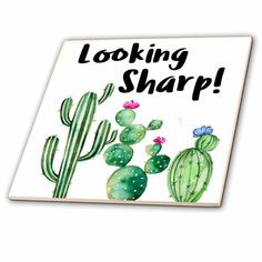 Funny Ironic Looking Sharp Watercolor Cactus Quote - Ceramic Tile, Cactus Painting, Watercolor Cactus, Mini Cactus, Cactus Flower, Cactus Pics, Flower Plants, Cactus Quotes, Cactus Bedroom, Cactus E Suculentas