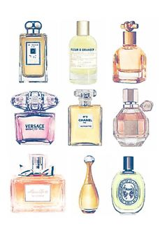 Perfume Chanel, Perspective Drawing Lessons, Paper Wall Art, Chanel No 5, Beauty Illustration, Flower Bomb, Miss Dior, Watercolor Fashion, Jo Malone