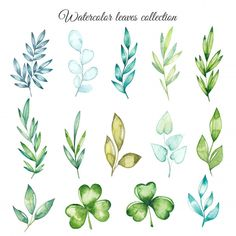 Watercolor Leaves, Floral Watercolor, Watercolor Paintings, Watercolour, Memorial Day Sales, Leaf Drawing, Easy Paintings, Art Plastique, Botanical Illustration