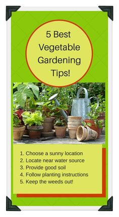 1000 images about veggie garden 101 on pinterest vegetable garden gardening and vegetables - Practical tips to make money from gardening ...
