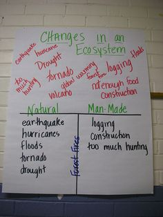 Learning Focused Classrooms   Flickr - Photo Sharing!