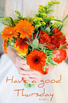 good morning with orange flowers . good morning thursday with orange flowers Happy Day Quotes, Good Morning Quotes For Him, Good Morning Messages, Good Morning Good Night, Morning Wish, Thursday Meme, Thursday Greetings, Good Thursday, Thursday Quotes