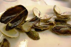 Mussels at Johnson Restaurant