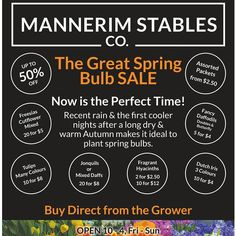 The Great Spring Bulb Sale starts this weekend @mannerimstablesco. Stables open 10am-4pm tomorrow & Sunday xxMsCo family by mannerimstablesco http://ift.tt/1JO3Y6G
