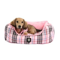 Awesome orbit Dog Beds