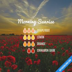 Morning Sunrise - Essential Oil Diffuser Blend