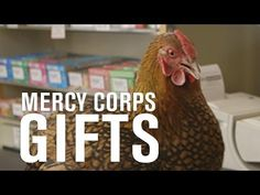 Honor your loved ones AND help families in need this holiday. Shop Mercy Corps Gifts now!