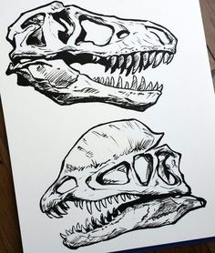 Marvelous Drawing Animals In The Zoo Ideas. Inconceivable Drawing Animals In The Zoo Ideas. Dinosaur Sketch, Dinosaur Drawing, Dinosaur Art, Tattoo Drawings, Art Drawings, Bone Drawing, Rite De Passage, Petit Tattoo, Desenhos Harry Potter