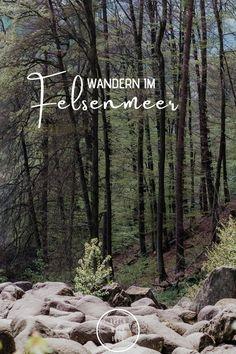 Wie in einem Märchenbuch schaut die gigantische Felsenlandschaft aus. Dunkelgraue Gesteinsbrocken fließen förmlich durch den Mischwald bei Lautertal im Odenwald. Neben jeder Menge Kletterspaß lässt es sich im beliebten Naherholungsgebiet Felsenmeer auch wunderbar wandern. Also schnappt euch festes Schuhwerk und los geht's. Maine, Rhein Main Gebiet, Der Bus, Frankfurt, Outdoor, Posts, Blog, Nature Reserve, Wiesbaden