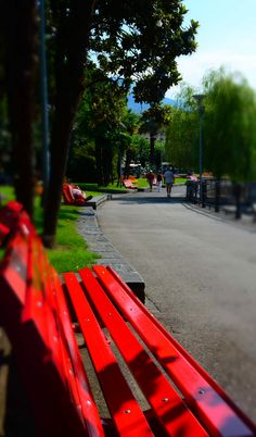 Junto al lago de Locarno, Ticino, Ch. (by Carolina Agrifoglio) Red Bench, Clean Beach, Alleyway, Palm Trees, Switzerland, Exotic, Park, Outdoor Decor, Beautiful