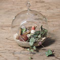 Glass Ball Terrarium with Mini Gnome