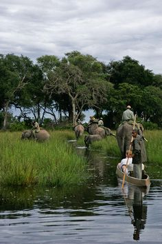 Go mobile in Botswana and experience an adventure, not just a safari. Oh The Places You'll Go, Places To Visit, Travel Around The World, Around The Worlds, Elephas Maximus, Herd Of Elephants, Namibia, The Secret World, Garden Route