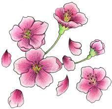 cherry blossom tattoo drawing - Google-haku