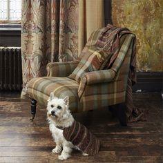 Tartan Chair - In Scottish Interior Life, journalist Heather MacLeod looks at interiors in Scotland. Tartan Fabric, Tartan Plaid, Tartan Decor, Scottish Decor, Style Anglais, Motif Art Deco, English Interior, Scottish Fashion, Scottish Tartans