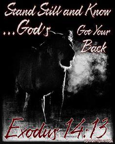 Stand Still and Know ...God's Got Your Back... Exodus 14:13 #LoveMyJesus  Dan slaan siener se Bybel oop by Eks. 14:13 wat sê dat jy jou vyand tot in der ewigheid nooit weer sal sien nie.  ...En in ons dag gaan God se volk vir die derde en laaste keer 'n nuwe Kanaän in besit neem; 'n Kanaän wat tot.... Read more... https://facebook.com/photo.php?fbid=1201799466548370&id=723241771070811&ce&ref=bookmarks