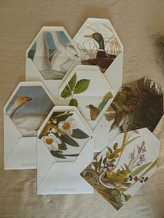 Thank you notes...Envelopes lined with pages from Audubon catalogs and books... I need to keep my eyes open for audubon, flora and fauna and animal husbandry books at flea markets from now on. I'll be slipping these into my Paddock Correspondence Envelope.