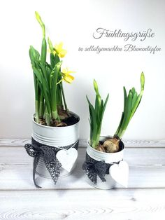 Making a homemade flower pot from tin cans - Konserven Galvanized Decor, Fleurs Diy, Tin Can Crafts, Diy Projects For Beginners, Diy Chicken Coop, Diy Décoration, Spring Flowers, Flower Pots, Planter Pots