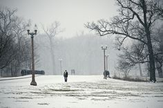'Walk In The Park' ~ St. Louis, MO