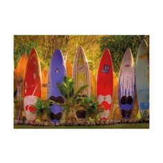 Brewster 8-902 Maui Wall Mural N/A Home Decor Murals ($145) ❤ liked on Polyvore featuring home, home decor, wall art, murals, wallpaper, brewster home fashions, colorful wall art, tree mural, interior wall decor and mounted wall art
