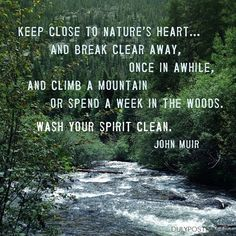 """""""Keep close to Nature's heart… and break clear away, once in awhile, and climb a mountain or spend a week in the woods. Wash your spirit clean."""" quote by John Muir Life Quotes Love, Great Quotes, Quotes To Live By, Me Quotes, Inspirational Quotes, Peace Quotes, Motivational, Beauty Quotes, John Muir Quotes"""