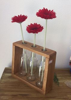 Wooden Plant Stands, Diy Plant Stand, Cactus Pot, Room Inspiration, Vases, Diy And Crafts, Gardening, Table Decorations, Bottle