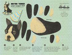 Boston Terrier printable