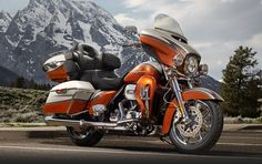 Harley-Davidson is recalling 66,421 Touring and CVO Touring motorcycles from the 2014 model year because their front wheels can lock up without warning.  Motorcycles with anti-lock brakes built between July 1, 2013, and May 7, 2014, are included in the recall.
