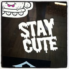 Stay cute decals