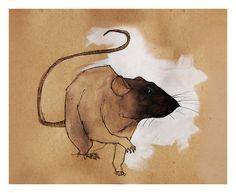 Rat_Black_1 by `Duffzilla on deviantART