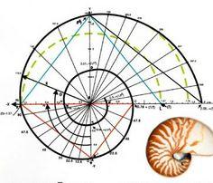 http://www.stefanides.gr/Html/Nautilus.htm