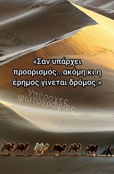 Greek Quotes, Pretty Little, Posters, Beach, Water, Outdoor, Fashion, Quotes, Gripe Water