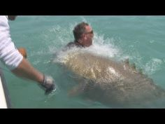 Illinois Man catches Huge Fish! this is too much work