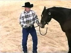 Horse Training with John Lyons - Pull Back Part 1, Johnny Lyons is a great trainer who has wonderful helpful vieos to help you with your horse