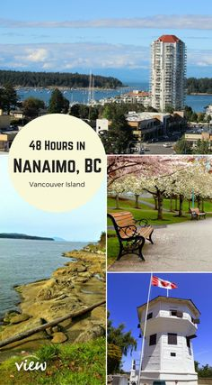 Are you travelling to Vancouver Island this summer? Rather than just travel through Nanaimo, why not make the Harbour City one of your stops? Let us show you how much Nanaimo has to offer! Visit Vancouver, Vancouver Island, Nanaimo British Columbia, Places To Travel, Places To See, Maui Vacation, Vacation Ideas, Canadian Travel, Visit Canada