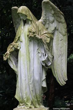 Beautiful angel. It's almost a shame they're nearly always relegated to cemeteries. I suppose the dead need them too. ..