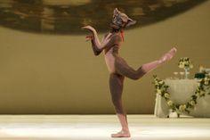 Iohna Loots as Pépé the dog in Ashton's Wedding Bouquet at Royal Ballet #royalballet #dog #ballet #ashton