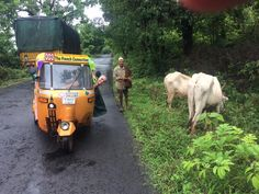 An adventure which traverses India in a three-wheeled vehicle with a two-stroke engine: The Auto Rickshaw Car Wheels, Challenges, Adventure, Vehicles, Animals, Animales, Animaux, Car, Animal