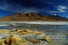 Peru Altiplano
