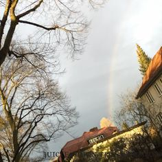 Guten Morgen! Schaut euch mal den goldenen Baum an! Ist das das Ende von vom Regenbogen ! #rosenmontag #regenbogen #zehlendorf #endedesregenbogens #transform30 #juicepluslifestyle
