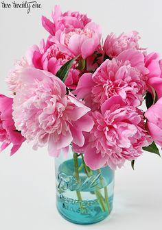 fresh cut peonies from My Flower, Flower Power, Glass Jars, Mason Jars, Watercolor Flowers, Peonies, Flower Arrangements, Centerpieces, Landscape