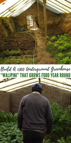 """Build A $300 Underground Greenhouse """"Walipini"""" That Grows Food Year Round - There is some serious back work in making one of these. You will have to do some digging. Or you could get the help of modern equipment. Either way you are looking at creating a green house that will not need to be heated over the cold winter and will allow you to grow food at anytime during the year."""
