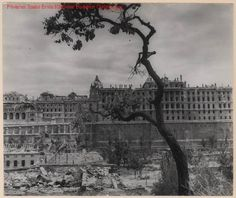 Budapest, The Royal Palace in ruins. Germany Poland, Buda Castle, Cities In Europe, Royal Palace, Budapest Hungary, City Buildings, Capital City, Old Pictures, Historical Photos