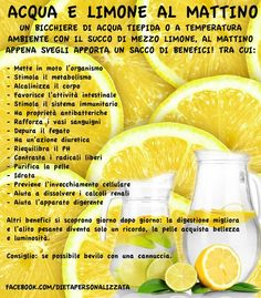 benefits of water lemon, lemon water, acqua e limone benefici, Wellness Fitness, Health And Wellness, Health Tips, Health Fitness, In Natura, Juice Plus, Green Life, Love Food, Body Care