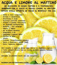 Al mattino appena svegli e a digiuno proviamo a iniziare bevendo una tazza di acqua tiepida e limone, elementi semplici ma benefici. Il succo così acido del limone ha la sua principale proprietà proprio nell'avere nel nostro organismo, un'azione contraria, cioè alcalinizzante. Gli acidi che lo caratterizzano una volta introdotti nell'organismo danno infatti reazione basica, …