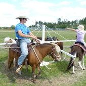 Andy - Gentle, Easy-to-handle Pony Gelding for sale in Cordele, Georgia :: HorseClicks