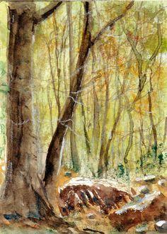 ACEO Original Miniature Watercolor Mountain Landscape Painting Signed BRJ US #Miniature