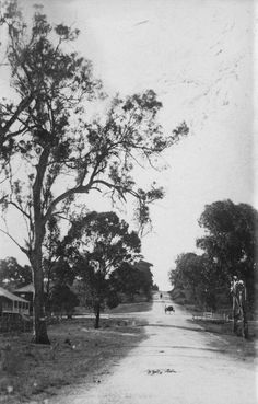 Sandgate Rd,Nundah in Queensland from around 1910. State Library of Queensland.